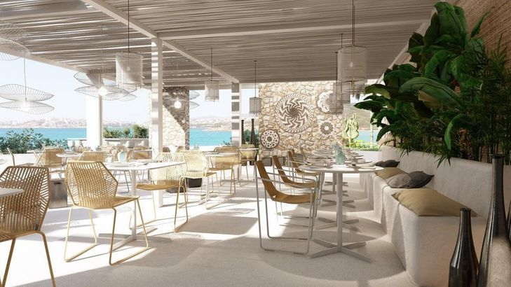 The Island Concept hotel_category.name